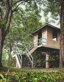 小屋在森林里 图库摄影
