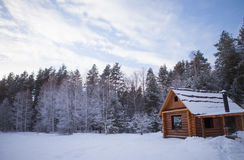 小屋在森林 免版税库存图片