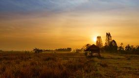 小屋在米领域种植的由竹子制成,泰国 图库摄影