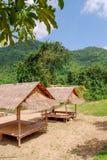小屋在绿色森林里 免版税库存照片