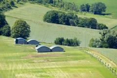 小屋在绿色草甸 图库摄影