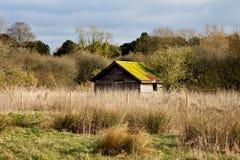 小屋在草甸 免版税库存照片