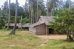 小屋在酸值Tonsay海岛上的一个密林 免版税库存照片