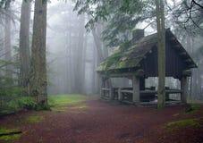 小屋有薄雾的风景森林地 免版税库存图片
