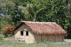 小屋结构树 免版税库存照片