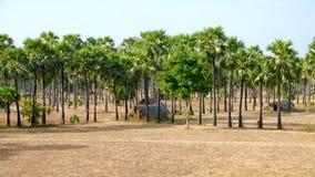 小屋缅甸 免版税库存照片