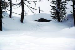 小屋,风景,冰,雪屋顶背景,在Dolomiti山的冬天,在Cadore,意大利 库存图片