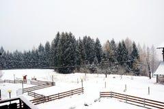 小屋,风景,雪屋顶背景,在Dolomiti山的冬天,在Cadore,意大利 库存照片