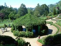 小山上面的庭院! 库存图片