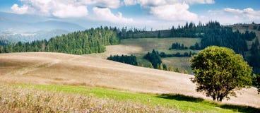 小山和山风景  免版税库存照片