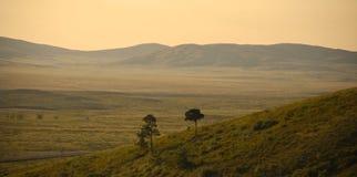小山和干草原 图库摄影