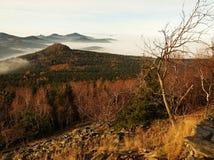小山和树峰顶从薄雾黄色和橙色波浪非常突出。第一太阳光芒。黑白照片 免版税库存照片