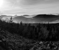 小山和树峰顶从薄雾黄色和橙色波浪非常突出。第一太阳光芒。黑白照片 库存图片