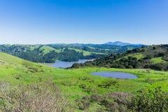 小山和草甸在不可靠的峡谷地方公园;圣巴勃罗水库;登上蝙蝠鱼在背景中,东部旧金山湾, 库存图片