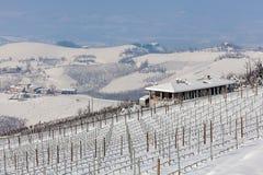 小山和葡萄园在冬天 库存图片