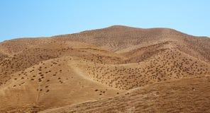 小山在以色列的沙漠 免版税库存图片