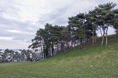 小山在Balatonboglar 库存图片