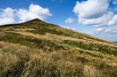 小山在Bieszczady国家公园在波兰 库存照片