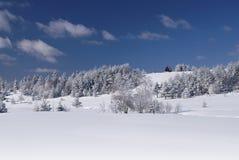 小山多雪房子的litle 免版税库存照片