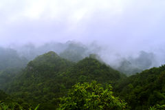 小山峰顶在猫Ba国家公园 免版税库存照片