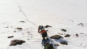 小山提供在树和积雪的领域的美丽的景色 与一大坚硬走的倾斜通过 影视素材