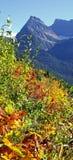 小山是活与秋天的颜色 库存图片