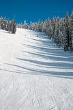 小山滑雪 图库摄影