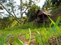 小山的一个木精神房子 免版税库存图片