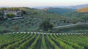 小山的全景和土地在托斯卡纳喝酒 股票视频