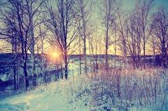 从小山的冬天日落 免版税图库摄影