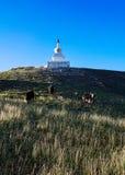 小山的塔 库存照片