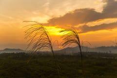 从小山的日落 免版税图库摄影