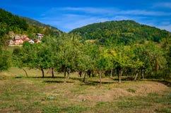 小山的美丽的村庄 图库摄影