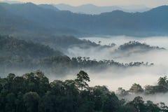 小山的雾海 免版税库存照片