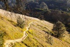 小山边登上蝙蝠鱼加利福尼亚的陡峭的土道路 库存照片