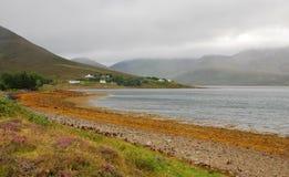 小岛横向苏格兰skye 图库摄影