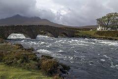 小岛苏格兰skye 免版税图库摄影