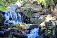 小岩石瀑布在有阳光streamin的一块森林地沼地 图库摄影