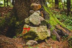 小径信号到森林里在一个雨天阿尔卑斯意大利 免版税库存照片
