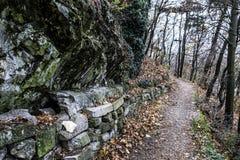 小径在秋天森林里,尼特拉河,斯洛伐克 免版税库存照片