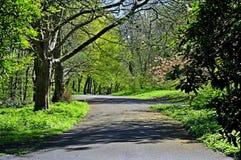 小径在Sefton公园利物浦利物浦 库存照片