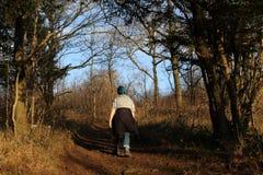 小径的女性步行者通过森林地区 免版税库存图片