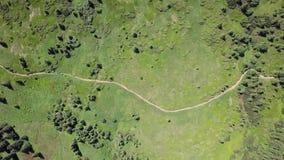小径的鸟瞰图在喀尔巴汗 乌克兰 顶视图 影视素材