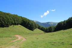 小径绿色山谷 图库摄影