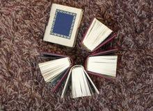 小微型书 库存照片