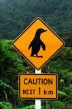 小心企鹅 免版税图库摄影
