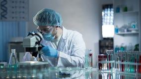 小心地探索样品的试验室工怍人员查出慢性病理学 免版税库存照片