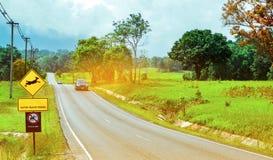 小心地驾驶在旅行期间的游人的蓝色SUV汽车在柏油路在与鹿跳跃的黄色交通标志附近 免版税库存图片