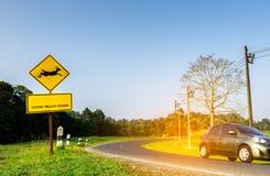 小心地驾驶在旅行期间的游人的Eco汽车在曲线柏油路在与跳跃的鹿的黄色交通标志附近里面 免版税库存照片