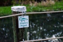 小心是明白的鳄鱼当前标志Okefenokee 免版税库存照片